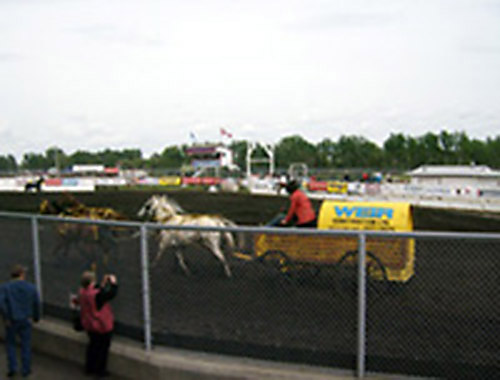Chuck Wagon Races 2008